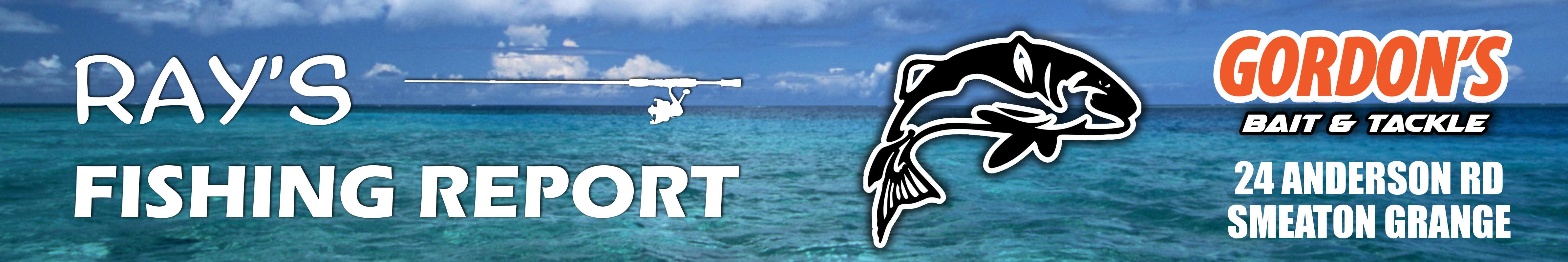 ray-fish-report.jpg
