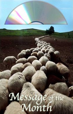 Real Sheep Follow by Martha Kilpatrick