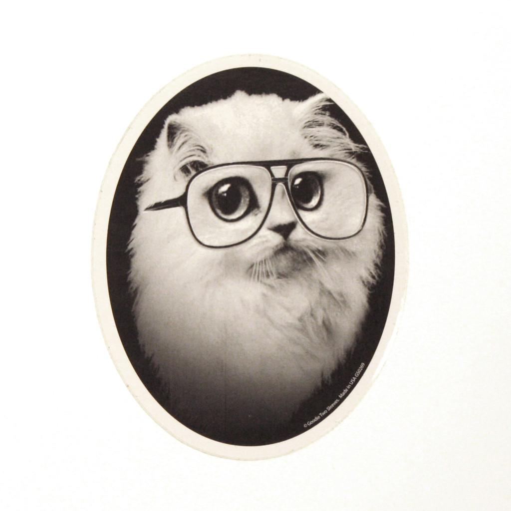 Cat Goodie Pack