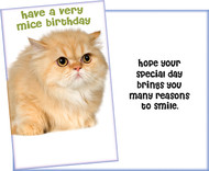 stockwell greetings wholesale greeting cards