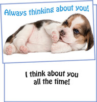 96900 six thinking of you greeting cards with six envelopes