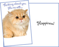 96901 six thinking of you greeting cards with six envelopes