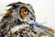 This print depicts a Great Horned Owl whose feathers flow in a river of color.  All of Dean's wildlife and nature watercolor paintings strive to capture the essence the subject whether it is a fish, bird or animal. His unique style aims to depict a subject in a way the viewer has never seen before in a watercolor painting.