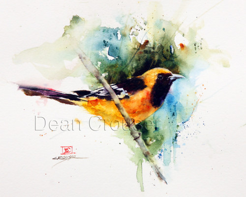 Hooded Oriole signed and numbered giclee' print.