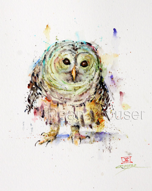 Pygmy Owl signed and numbered owl print.
