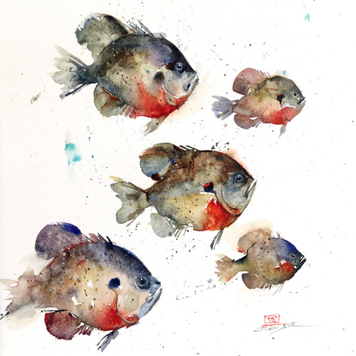 """BLUEGILL SCHOOL, Sketch"" original watercolor fish painting by Dean Crouser. This original painting measures approximately 9-1/2"" wide by 10"" tall. Here's a great opportunity to own a DC original! Artist retains any and all rights to future use of this painting. Thanks for looking!"