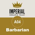 A04 - Barbarian