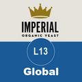 L13 - Global