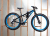 fat bike wall rack