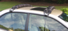self inflating roof rack sedan and suv