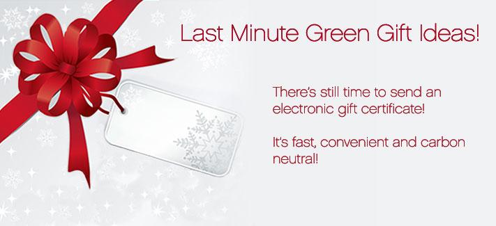Last Minute Green Gift Ideas