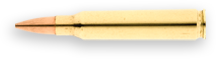 Black Hills 223 Remington 60gr Hornady V-MAX™Ammo - 50 Rounds