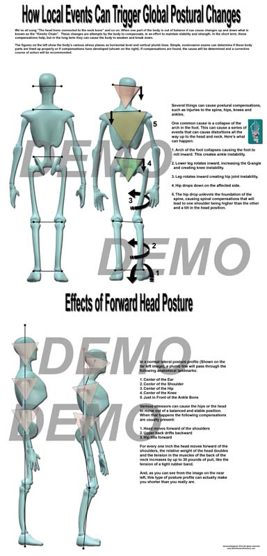 2014-posture-series-1small.jpg