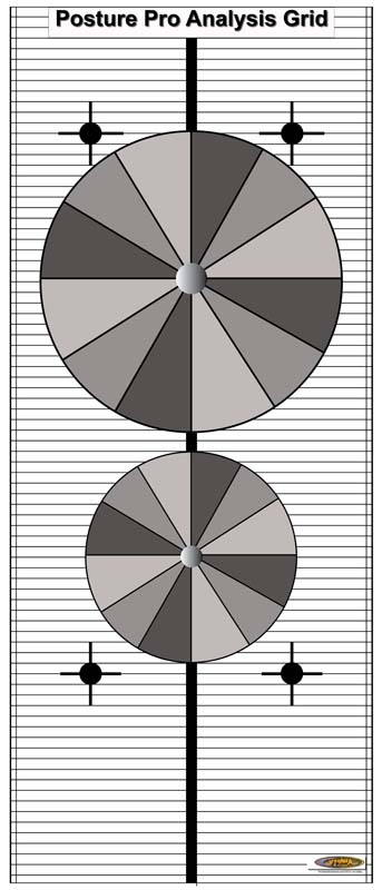 posture-grid-24x36-with-no-other-images-new-circles-chartsmall2.jpg