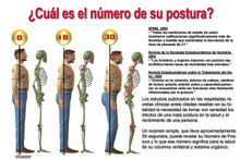 What's Your Posture Number  Spanish