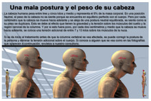 Head Weight and Posture  Spanish