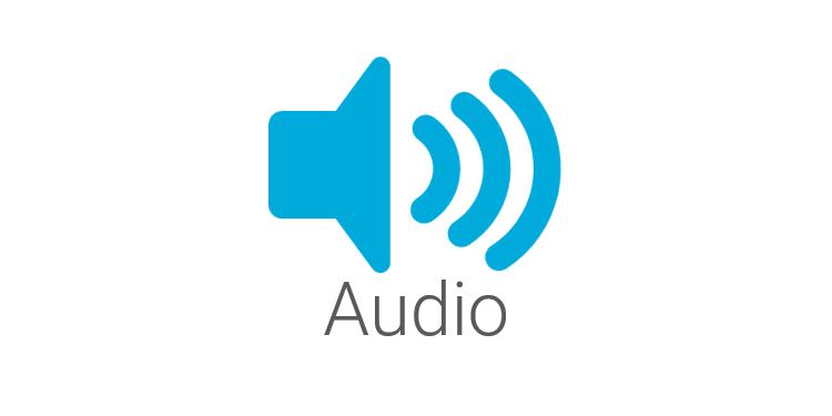 Video Conference Audio & Speakerphone