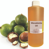 Macadamia Massage Oil