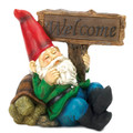 Solar Light-Up Welcome Garden Gnome and Turtle