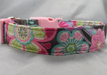 Big Bright Flowers on Brown Dog Collar
