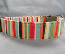 Dog Days Colorful Stripe No. IV Collar