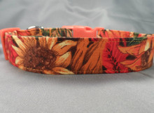 Autumn Colors Dog Collar rescue me dog collar