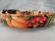 Fall Fruit on Black Dog Collar