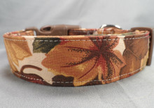 Fall Leaves on Cream Dog Collar