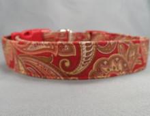 Red and Tan Paisley Dog Collar