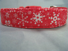 Snowflakes on Red Dog Collar