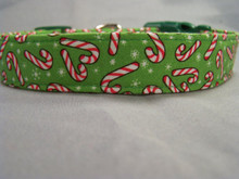 Candy Canes on Bright Green Dog Collar