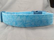 Blue Hearts Dog Collar