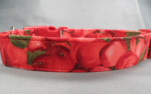Cheerful Cherries Dog Collar