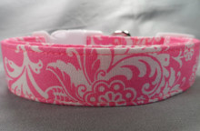 Hot Pink Scroll Dog Collar Rescue Me collar