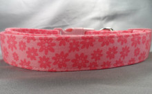 Pretty Pink Daisies Dog Collar rescue me collar