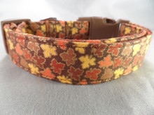 Small Autumn Maple Leaf Dog Collar Rescue Me Collar