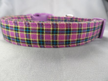 Purple Plaid Dog Collar Rescue Me Dog Collar