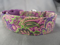 Green and Purple Paisley Dog Collar Rescue Me Collar