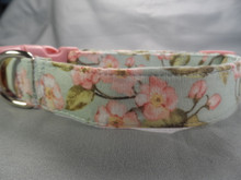 Pastel Blue with Pink Dogwood Flowers Dog Collar