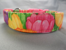 Colorful Spring Tulips Dog Collar Rescue Me collar