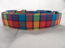 Dog Days Colorful Plaid Dog Collar