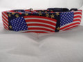 Gold Stars and USA Flags Dog Collar Rescue Me collar