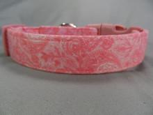 Dog Collar Pink on Pink Paisley