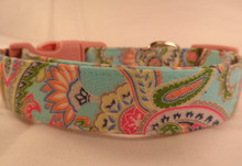Dog Collar Colorful Spring Paisley on Blue