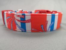 Fireworks  Stripe July 4th Patriotic Dog Collar rescue Me dog collar