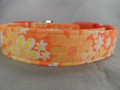 Flower Dog Collar Orange Posies Rescue Me Dog Collar