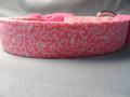 Girl Dog Collar, Pretty Scroll on Bright Pink Rescue me Dog Collar