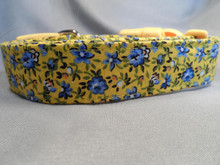 Yellow Dog Collar, Pretty Blue Flowers on Yellow