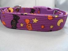 Halloween Dog Collar Orange and Black Bats on Purple Rescue Me Collar