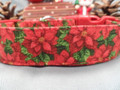Fancy Poinsettias on Green Christmas Dog Collar Rescue Me Collar